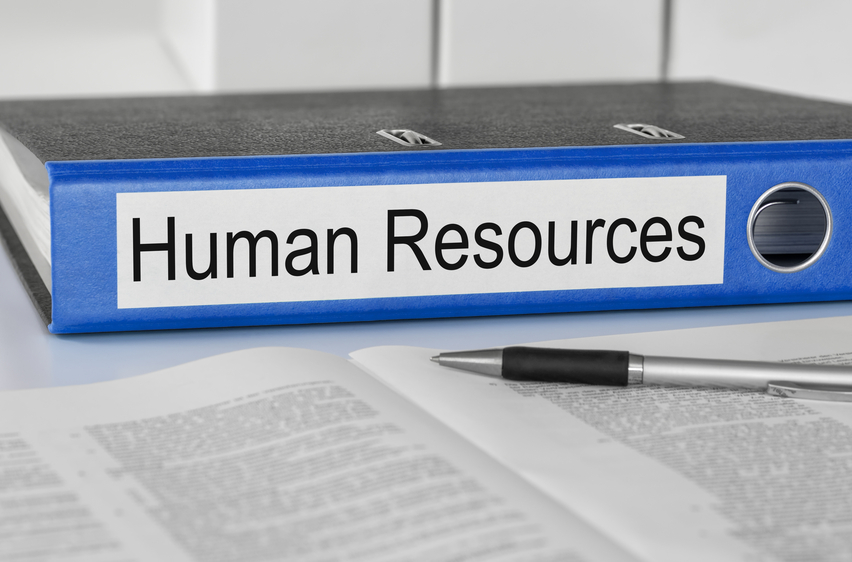 Basics of Human Resources You Should Know