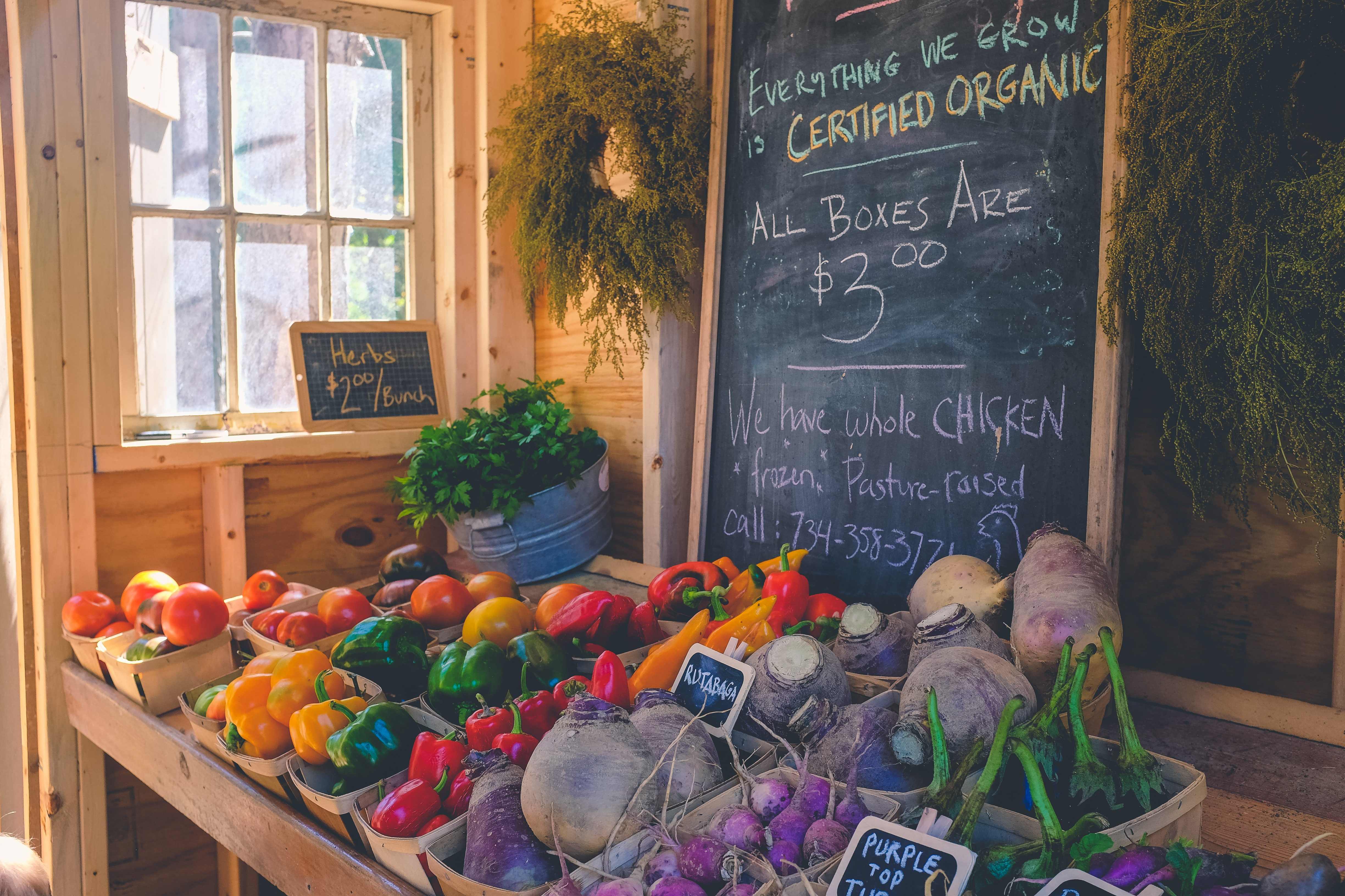 ONLINE: Costing, Pricing, and Break-Even