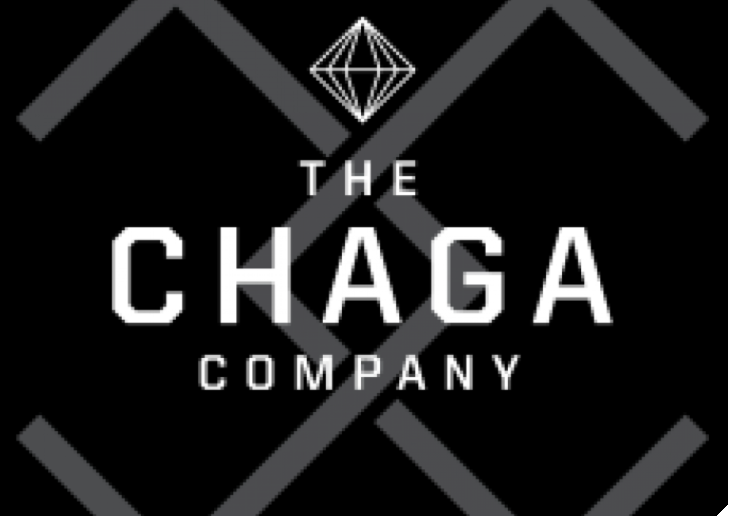 Success Story: How Mentoring Helped The Chaga Company