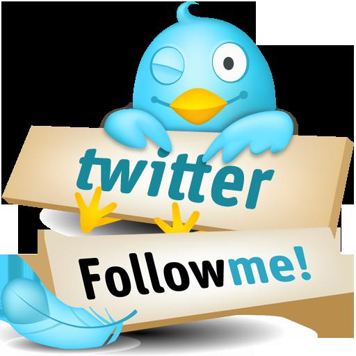 Twitter - Follow
