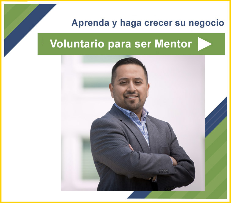 mentor volunteer
