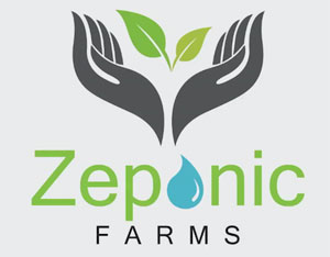 Outstanding Green Small Business Award - Zeponic Farms, LLC