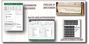 Excel: Organizing Data for Analysis - Getting the Insights You Need