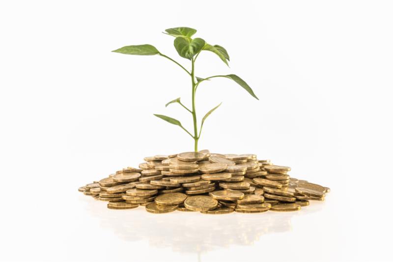 Camino a la Recuperación y el Crecimiento de su Negocio