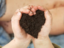 Child's hand holding dirt in the shape of a heart