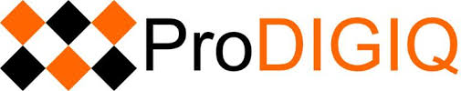 SCORE Client ProDIGIQ Wins Award of Excellence