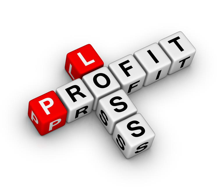 12 month profit and loss projection score