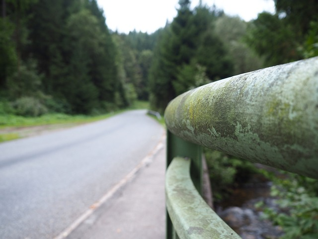 businesses need guardrails