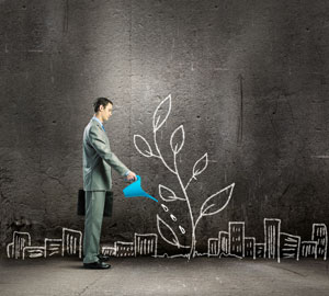 3 Essential Elements of Business Growth