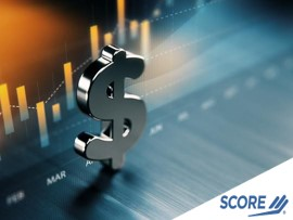 Financial Series - Sources of Funding