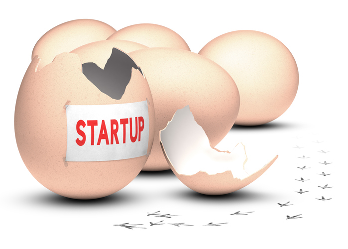 Is an Incubator Right for You?