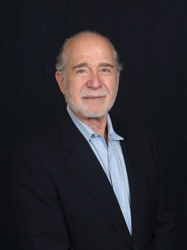 Martin P Brown