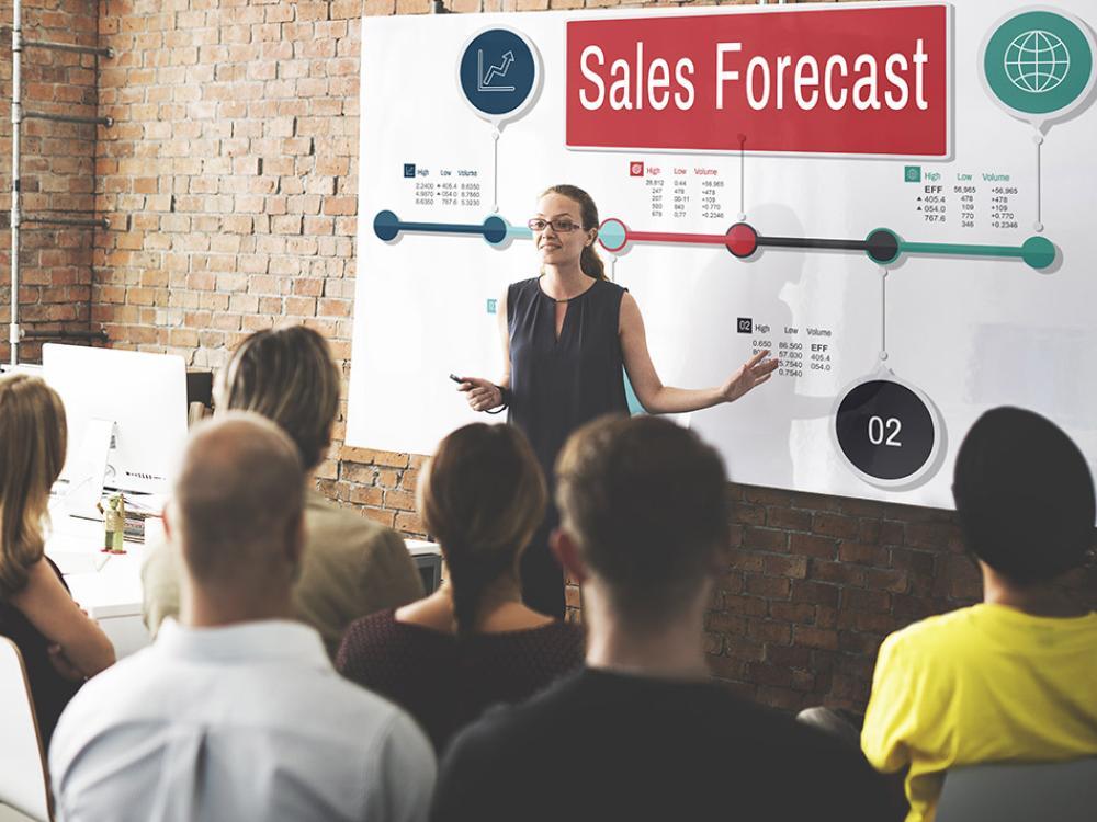 mentor teaching sales forecasting workshop