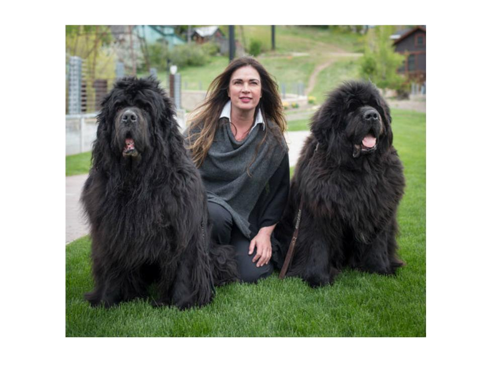 Valarie Kamdar and her two dogs