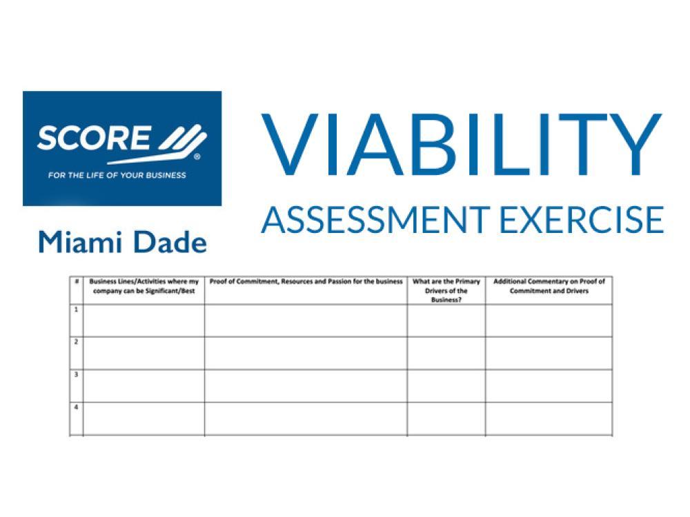 Viability Assessment Exercise