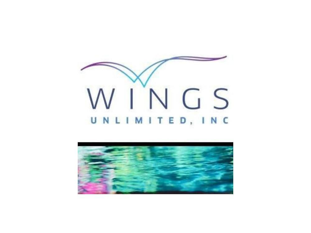 Wings Unlimited, Inc.