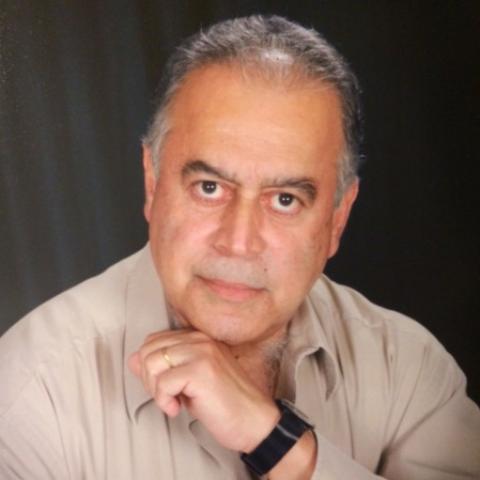 Luis F. Figueiredo