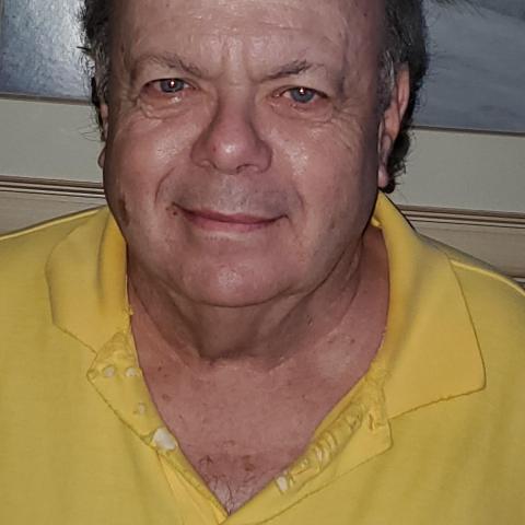 Steve V Greenbaum