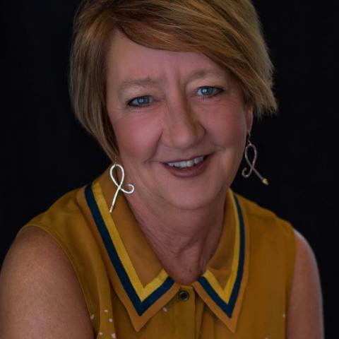 Debi L Howe
