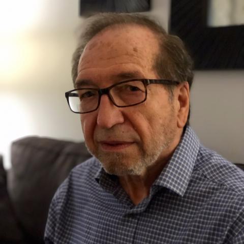 Alberto L Casadei