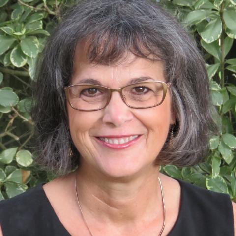 Susan C Phalen