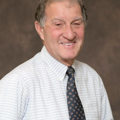 Richard G Paulino