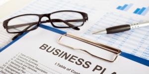 Business Idea Analysis