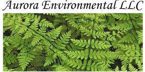 Aurora Environmental LLC