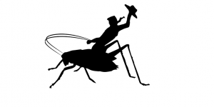 Cowboy Cricket Farms