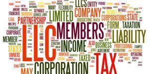LLC corporation