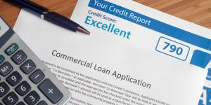 credit report and loan application