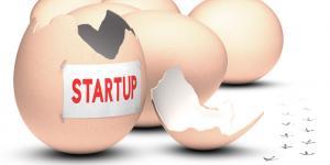 startup egg