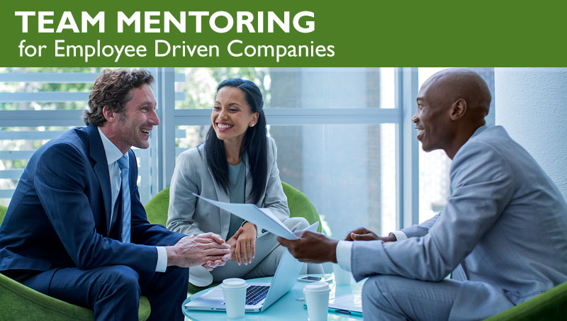 Team Mentoring for Employee Driven Companies