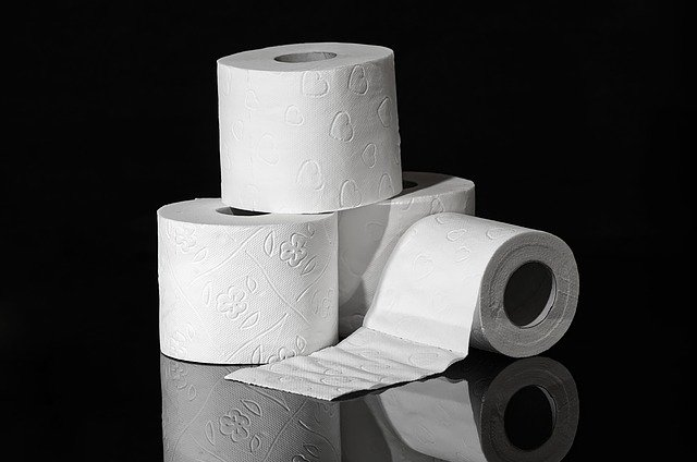 Is Toilet Paper Missing from your Business Plan?