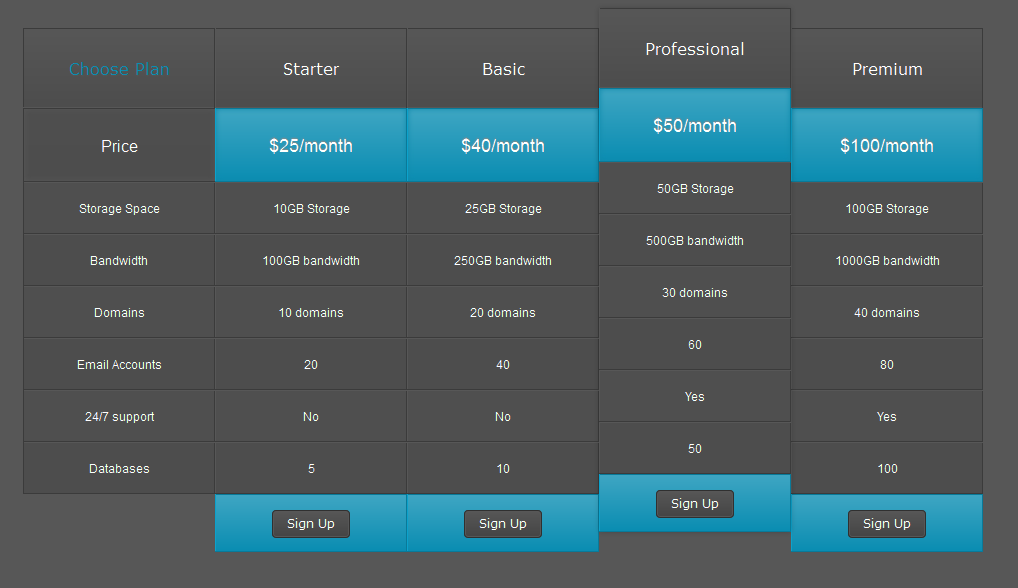 Css price table templates for Html table css template