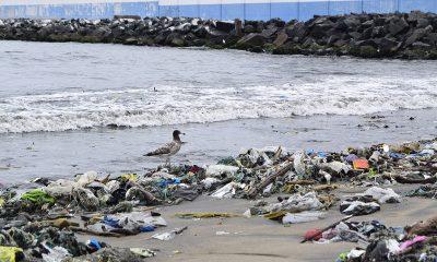 Día Mundial de Reciclaje: Esto hacen las marcas para salvar el mundo