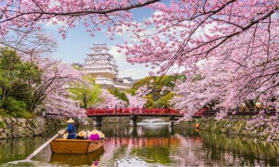Japón cubrirá hasta la mitad de tu viaje para reactivar el turismo