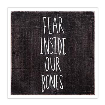 The Almost - Fear Inside Our Bones - Vinyl