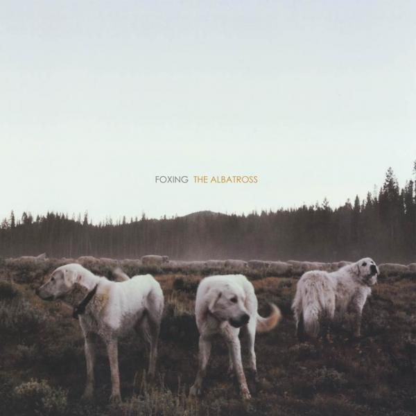 Foxing - Foxing - The Albatross CD - CDs