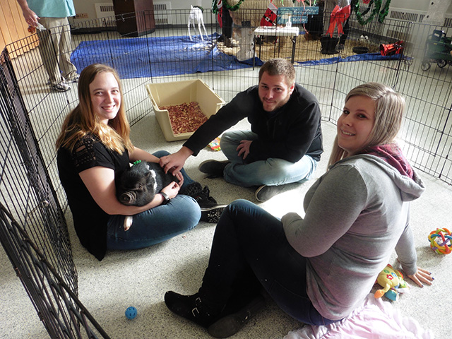 Image of Students Petting Animals