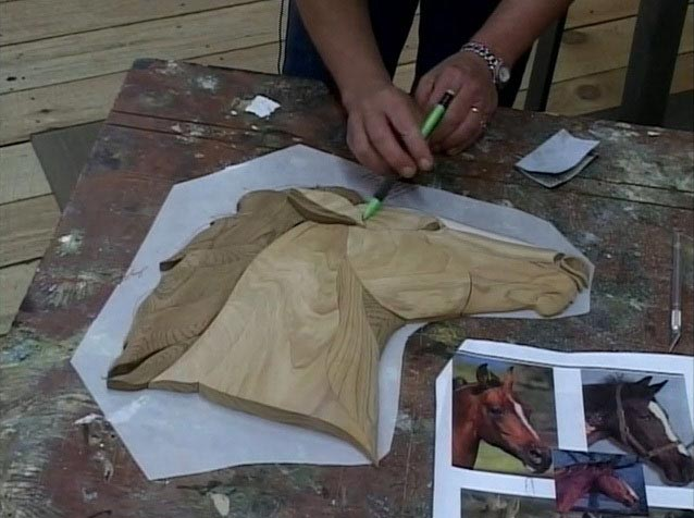 Judy Gale Roberts: Contouring Intarsia - Downloadable Video