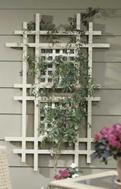 One terrific trellis
