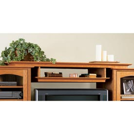 Entertainment center bridge and shelf