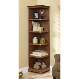 Corner Bookcase Woodworking Plan, Furniture Bookcases & Shelving