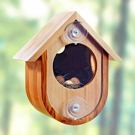 See-in Birdhouse Woodworking Plan, Outdoor For Birds & Pets