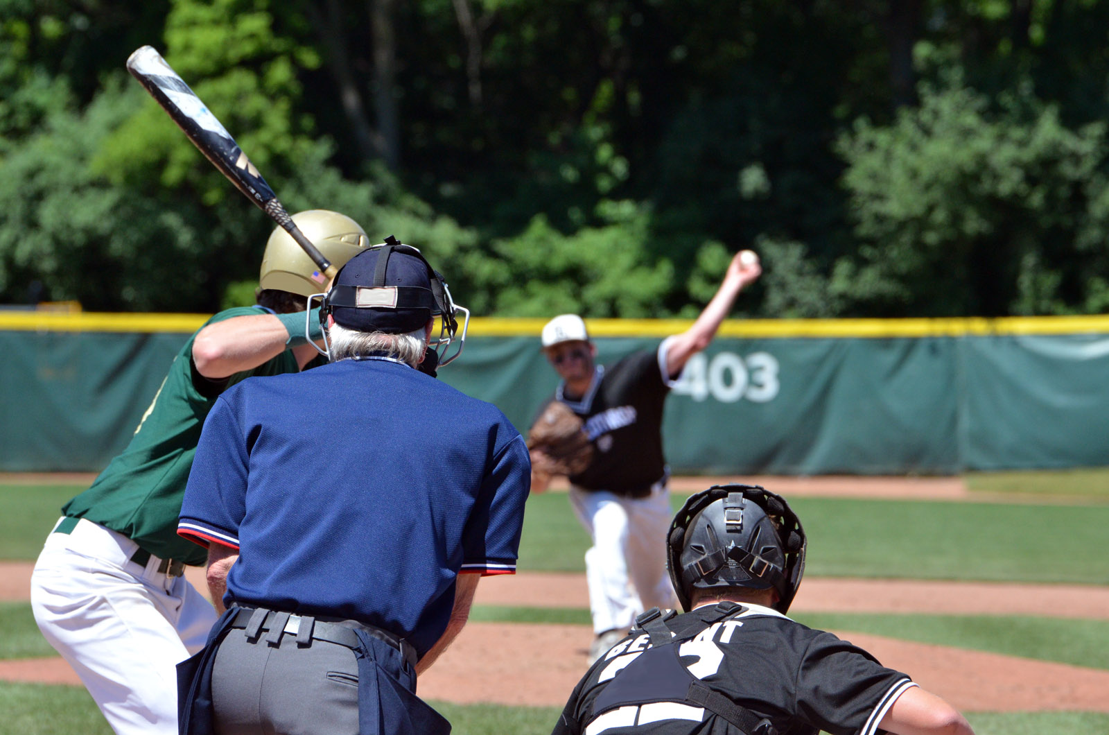 Baseball is one of four sports the MHSAA Network will have finals coverage of this June.