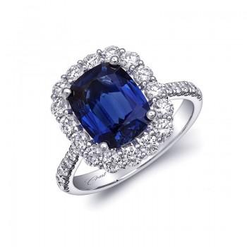 Coast Diamond Signature Color - LSK10082-S