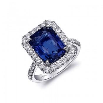 Coast Diamond Signature Color - LSK10084-S