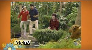 Gilligan's Island - Weekdays