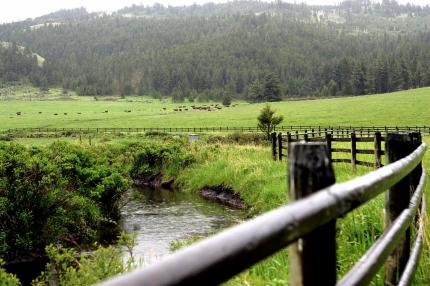 Irrigation canal on the west side of the ranch. This is fed from the upper reservoir by the spring snow melt from the mountains seen in the distance.